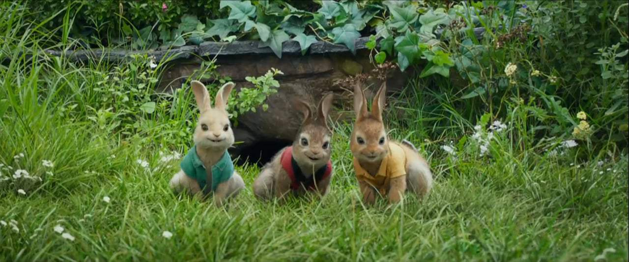 Peter Rabbit TV Spot - Versus (2018)