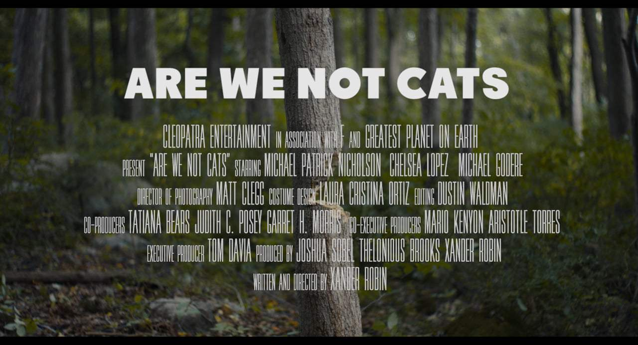 Are We Not Cats Theatrical Trailer (2016)