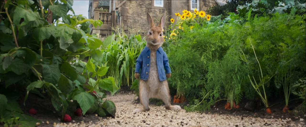 Peter Rabbit TV Spot - Pantless (2018)