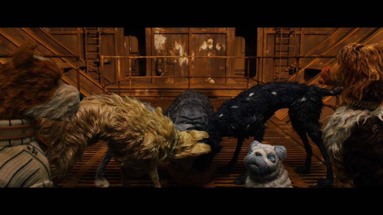 Isle of Dogs (2018) - Dog Zero