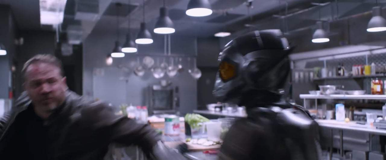 Ant-Man and the Wasp (2018) - Wings and Blasters
