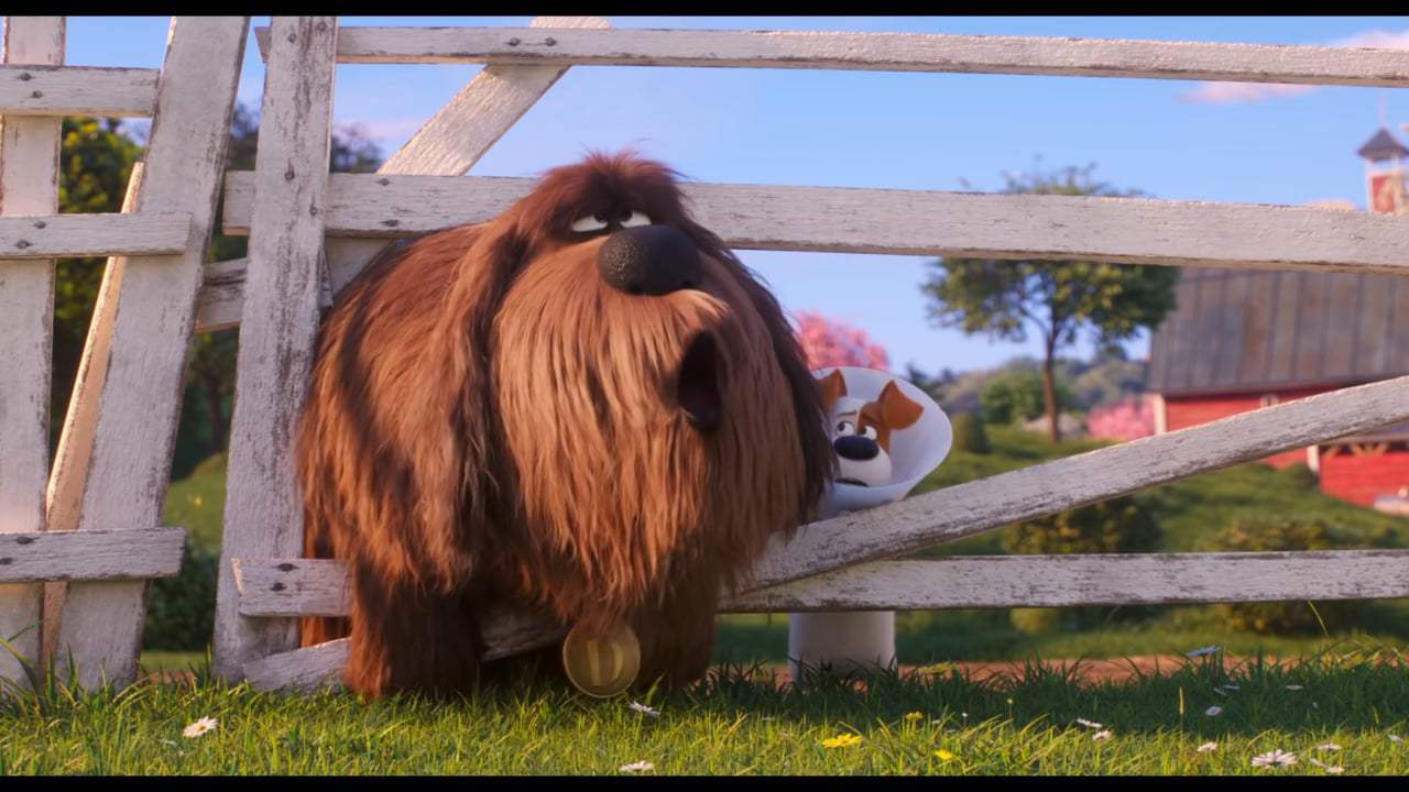 The Secret Life of Pets 2 Rooster Trailer (2019)