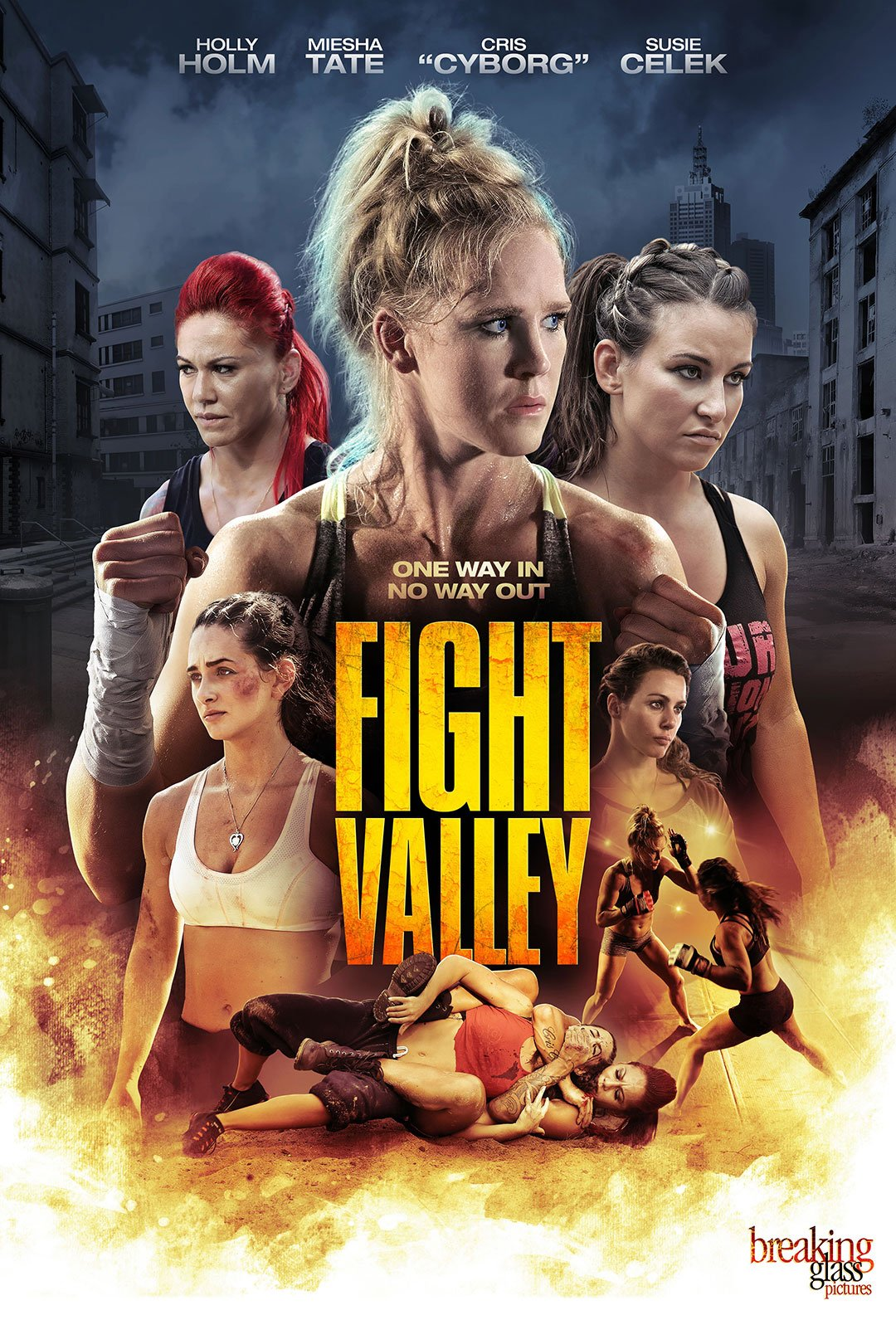 Fight Valley Poster #1