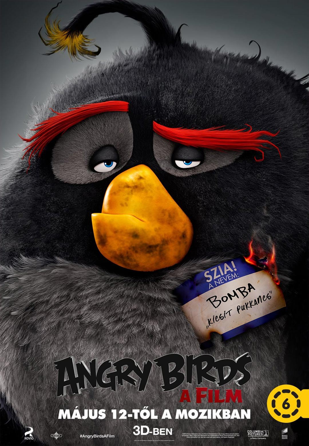 Angry Birds Poster #5