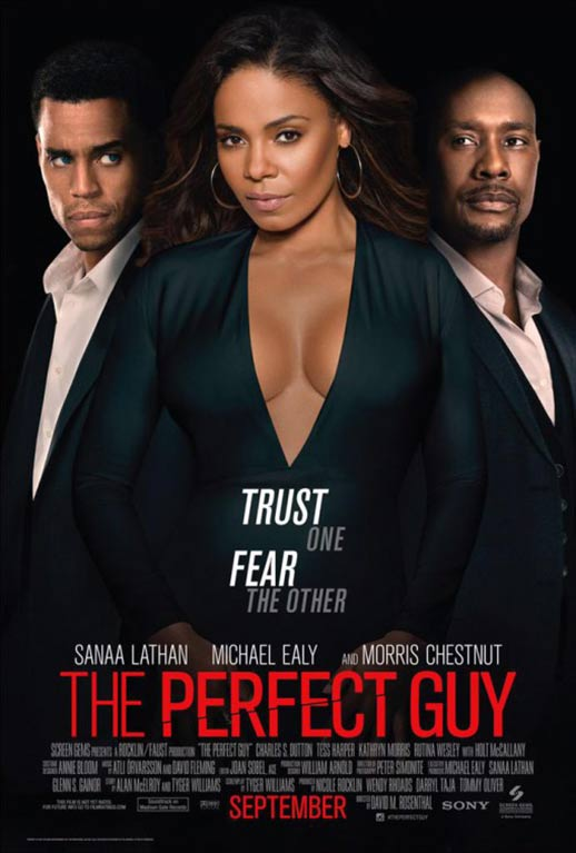 The Perfect Guy Poster #3