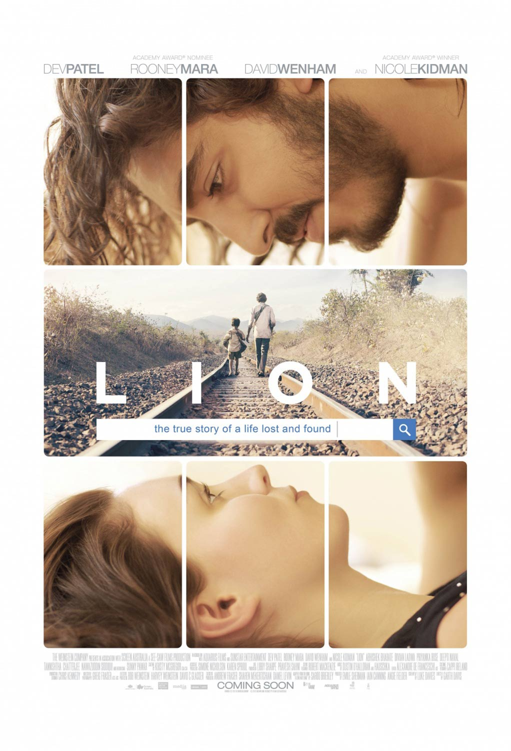 Lion Poster #2