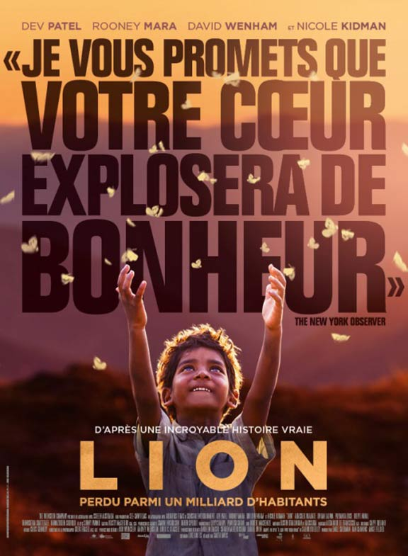 Lion Poster #6