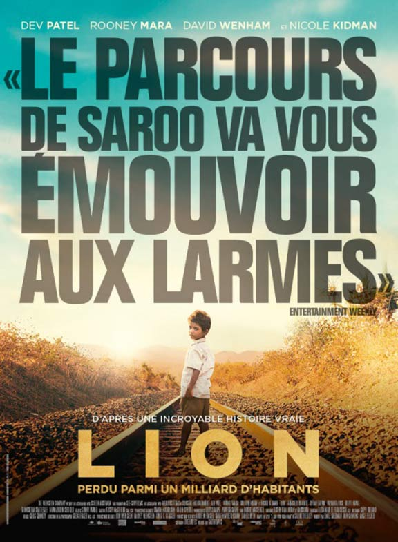 Lion Poster #7