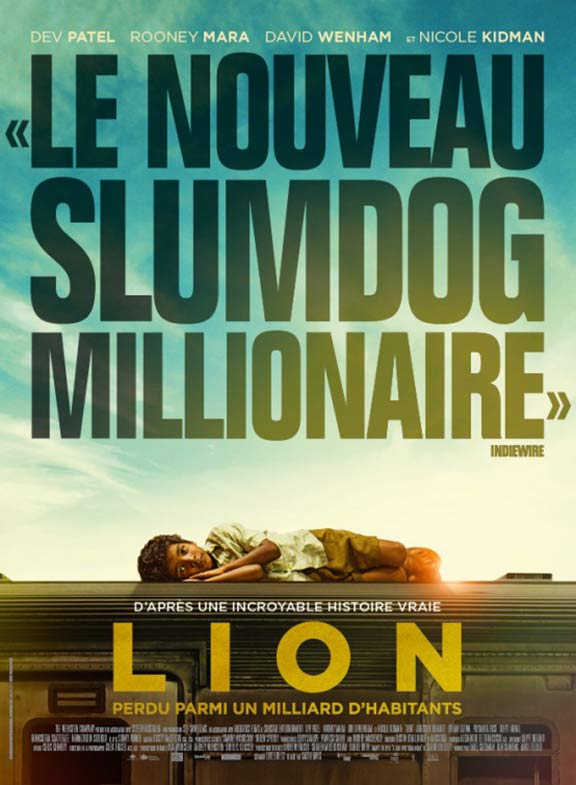 Lion Poster #8