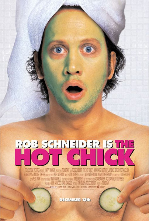The Hot Chick Poster #1
