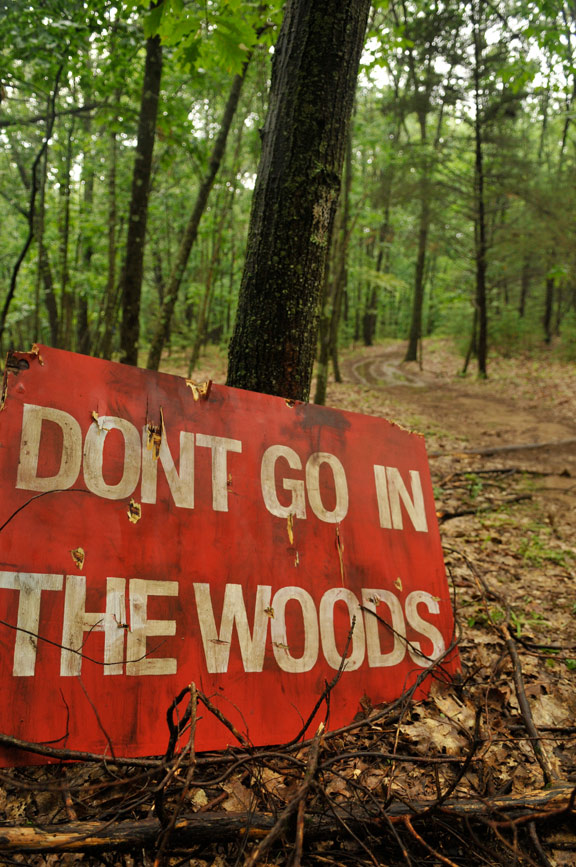 Don't Go in the Woods Poster #1