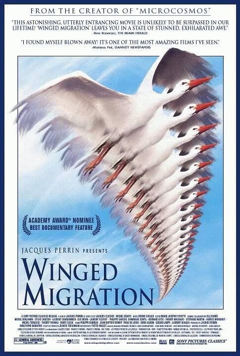 Winged Migration Poster #1