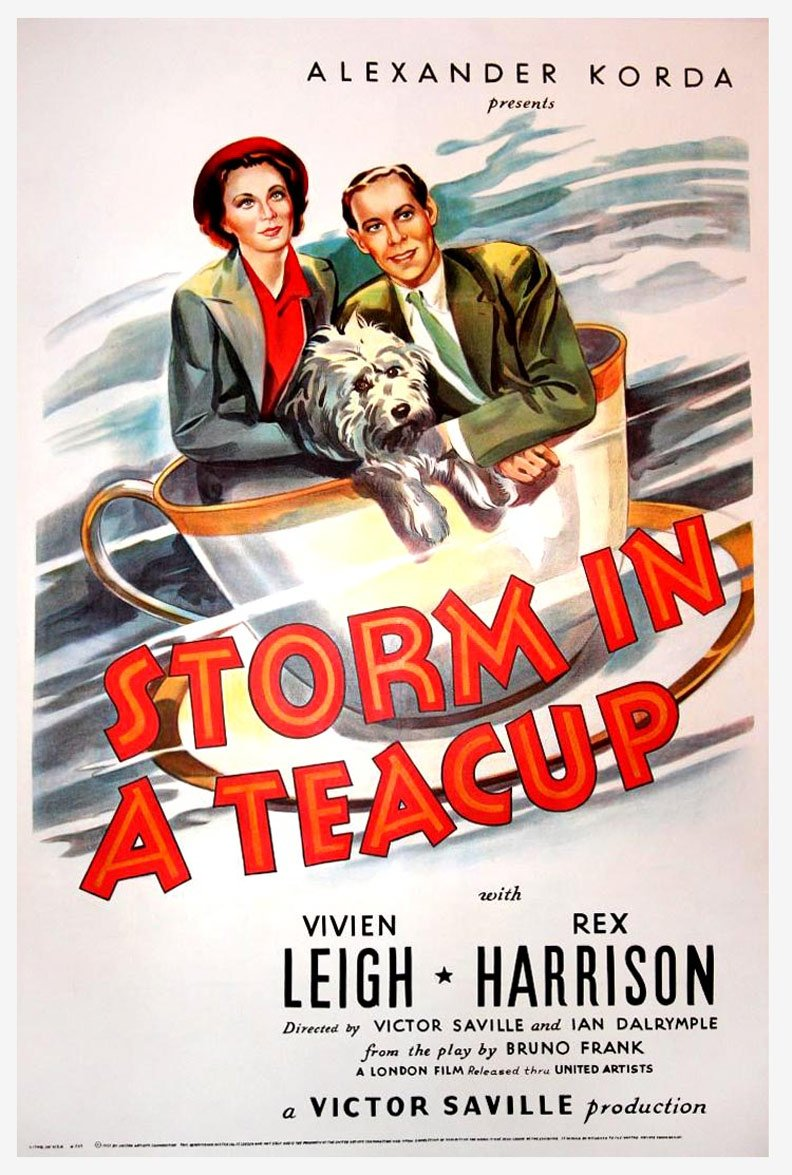 Storm in a Teacup Poster #1