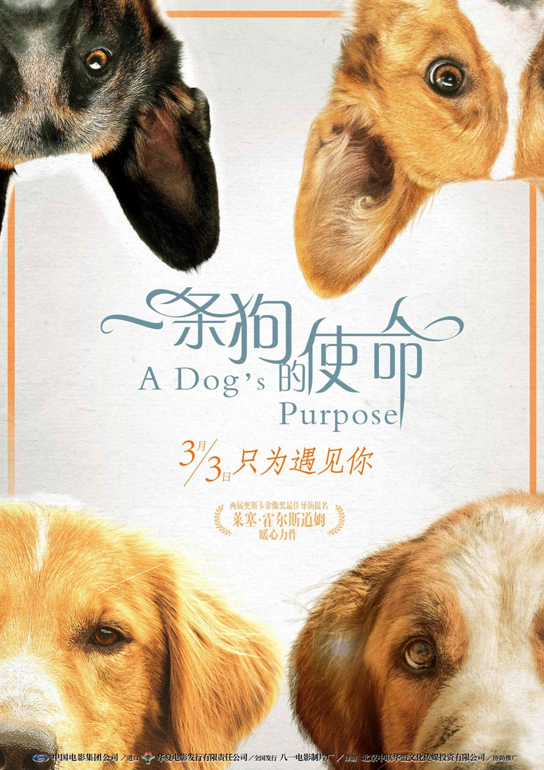 A Dog S Purpose Movie Poster