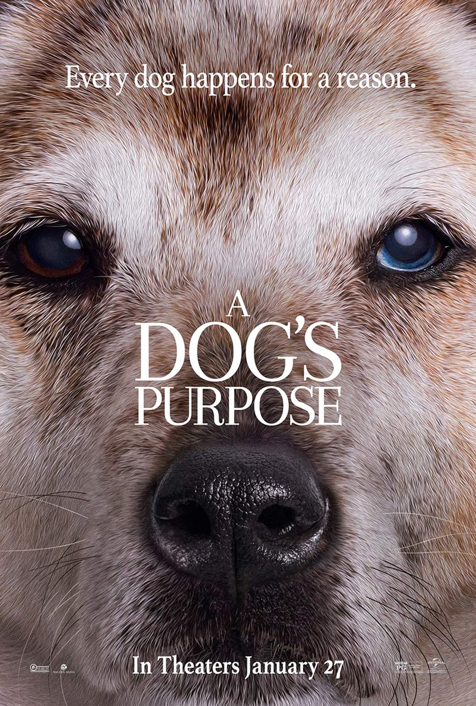 A Dog's Purpose Poster #5