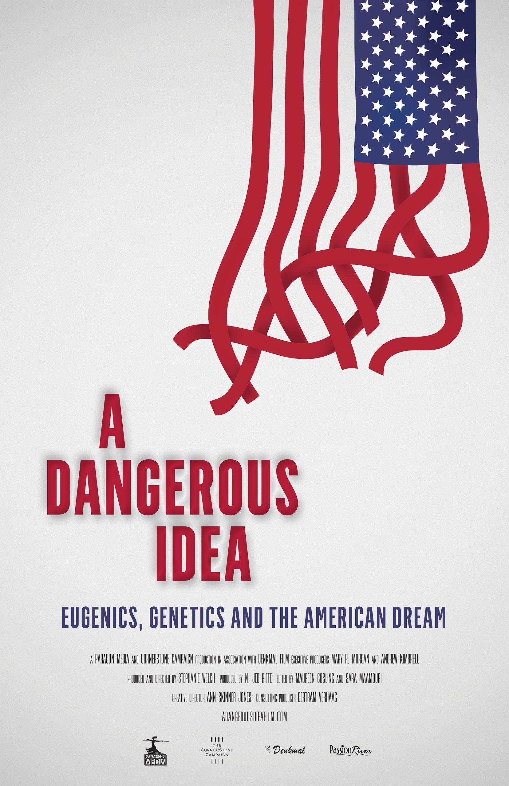 A Dangerous Idea Poster #1