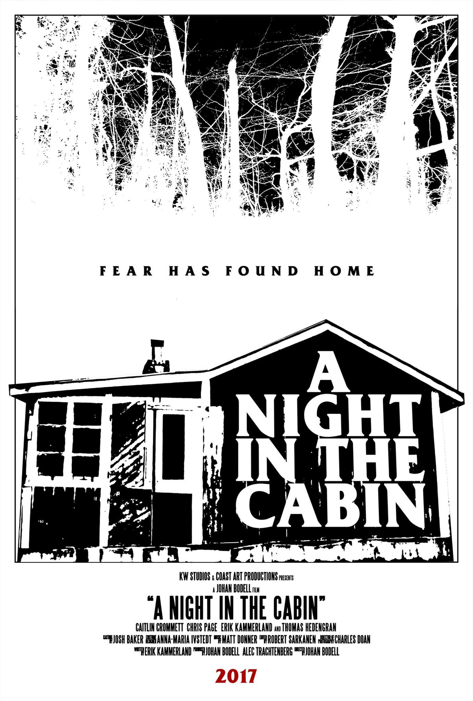 A Night in the Cabin Poster #2