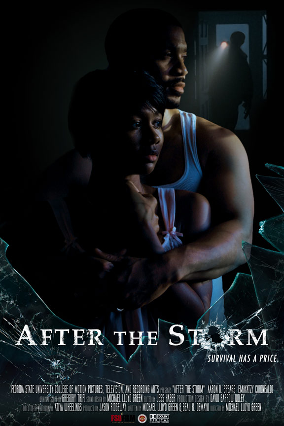 After the Storm Poster #1