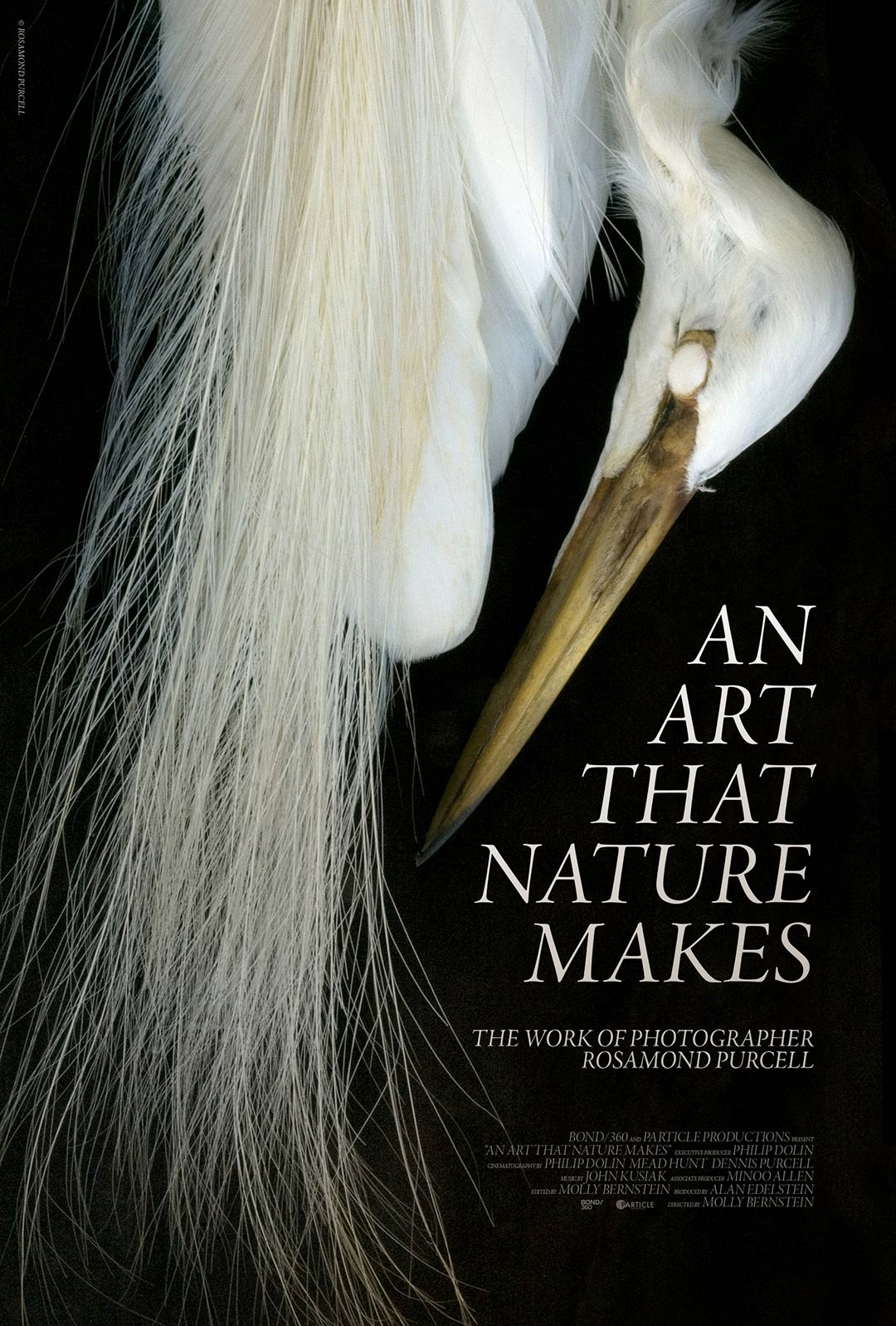 An Art That Nature Makes: The Work of Rosamond Purcell Poster #1