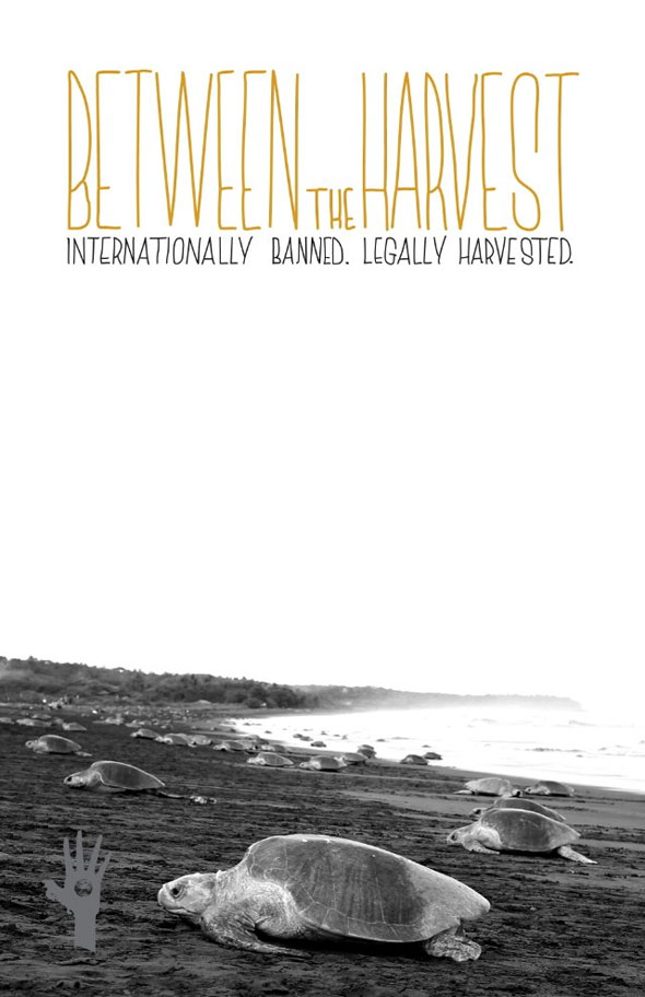 Between the Harvest Poster #1