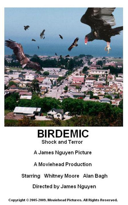 Birdemic Poster #1