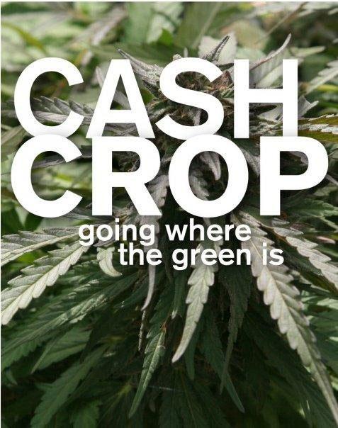 Cash Crop Poster #2
