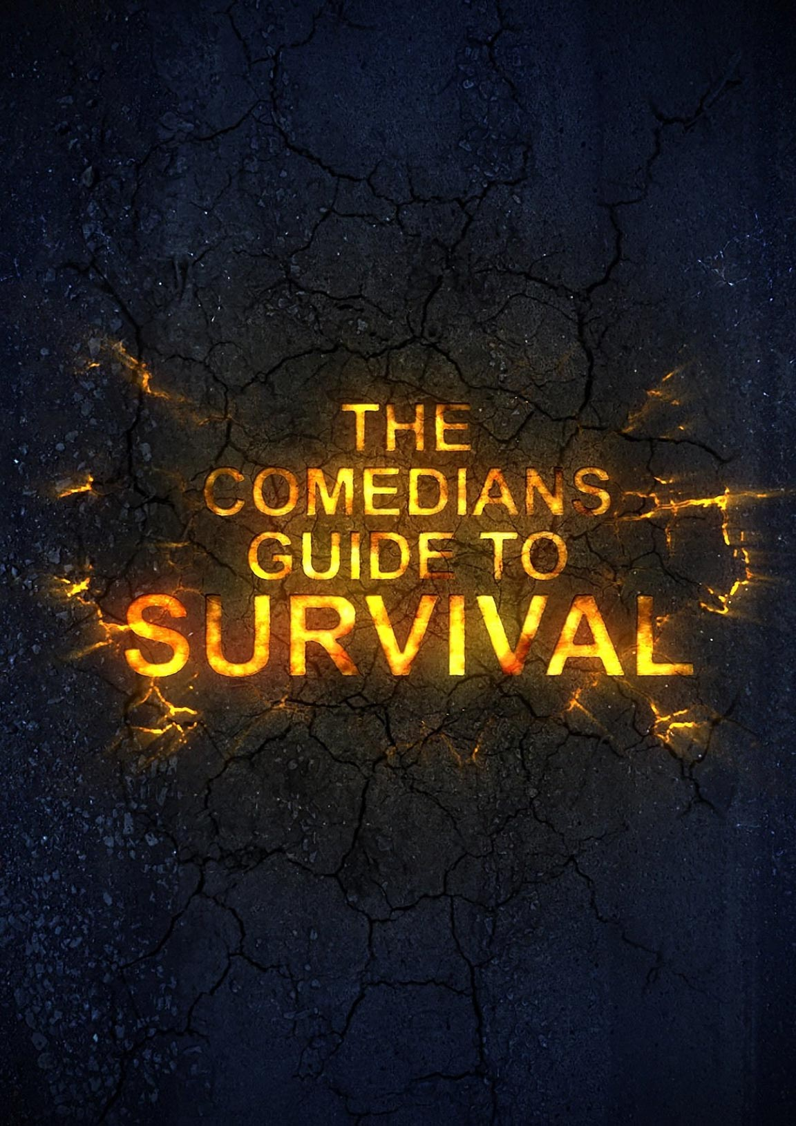 The Comedian's Guide to Survival Poster #1