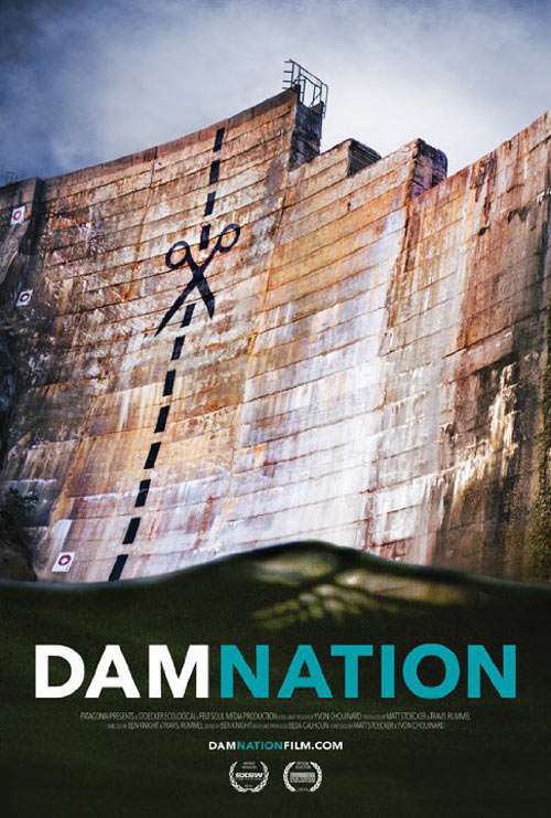 DamNation Poster #1