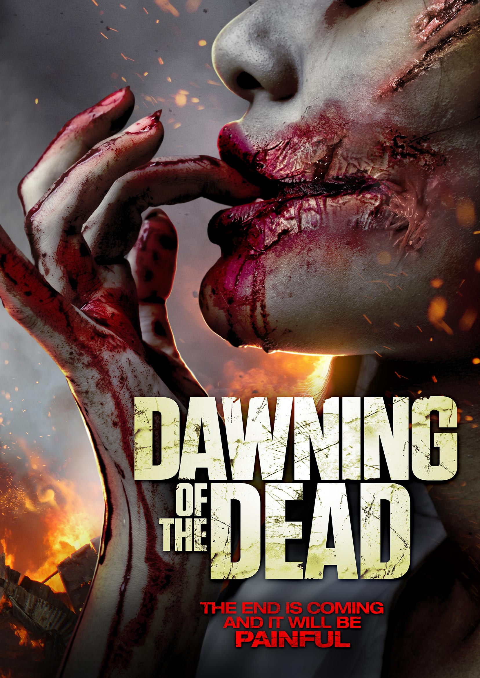 Dawning of the Dead Poster #1