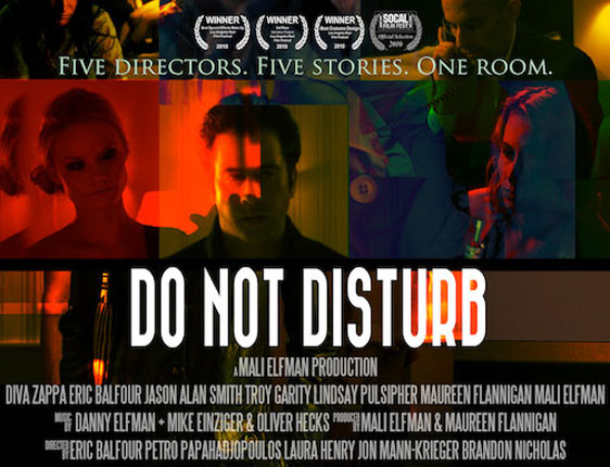 Do Not Disturb Poster #1