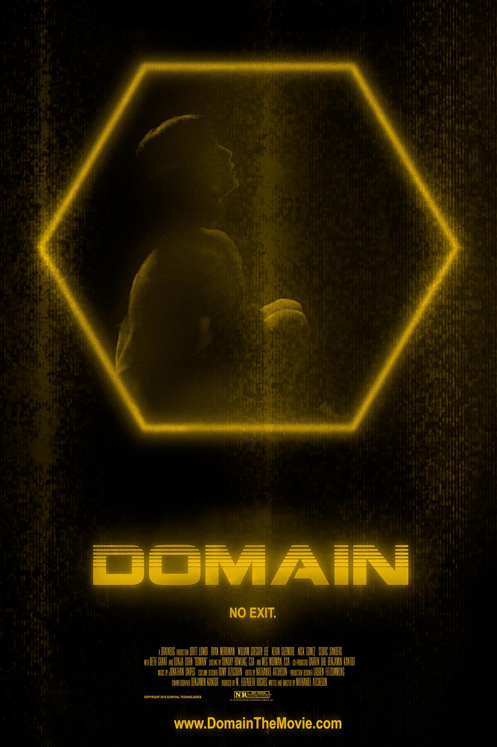 Domain Poster #1