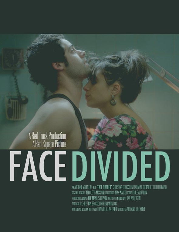 Face Divided Poster #1