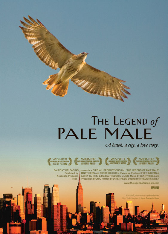 The Legend of Pale Male Poster #1