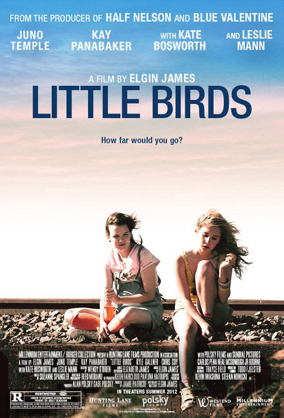 Little Birds Poster #1