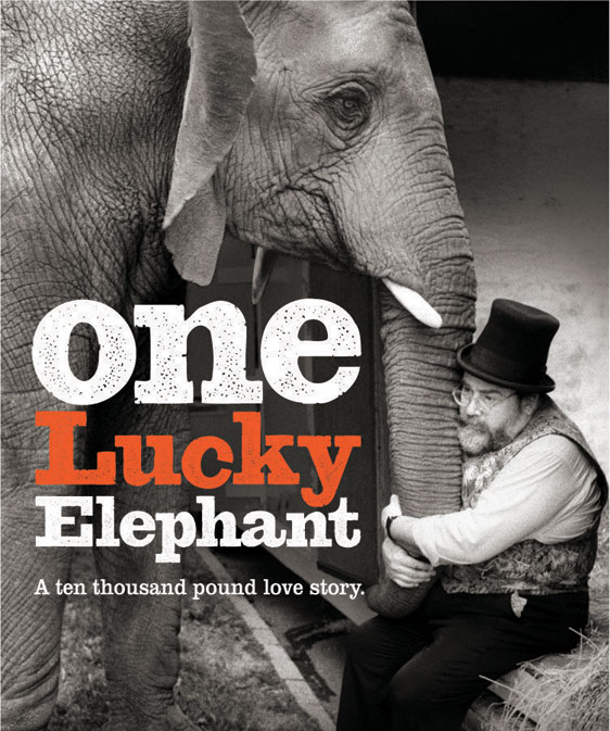 One Lucky Elephant Poster #1