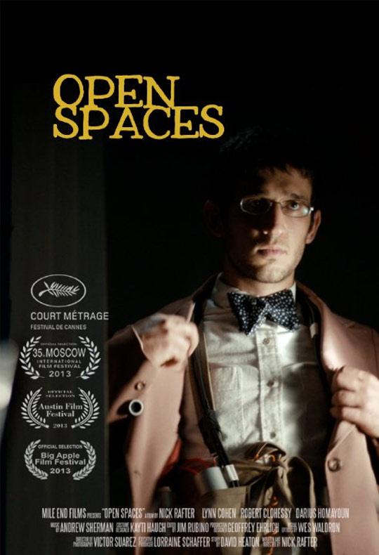 Open Spaces Poster #1