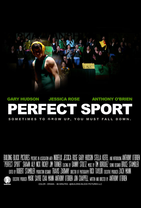 Perfect Sport Poster #1