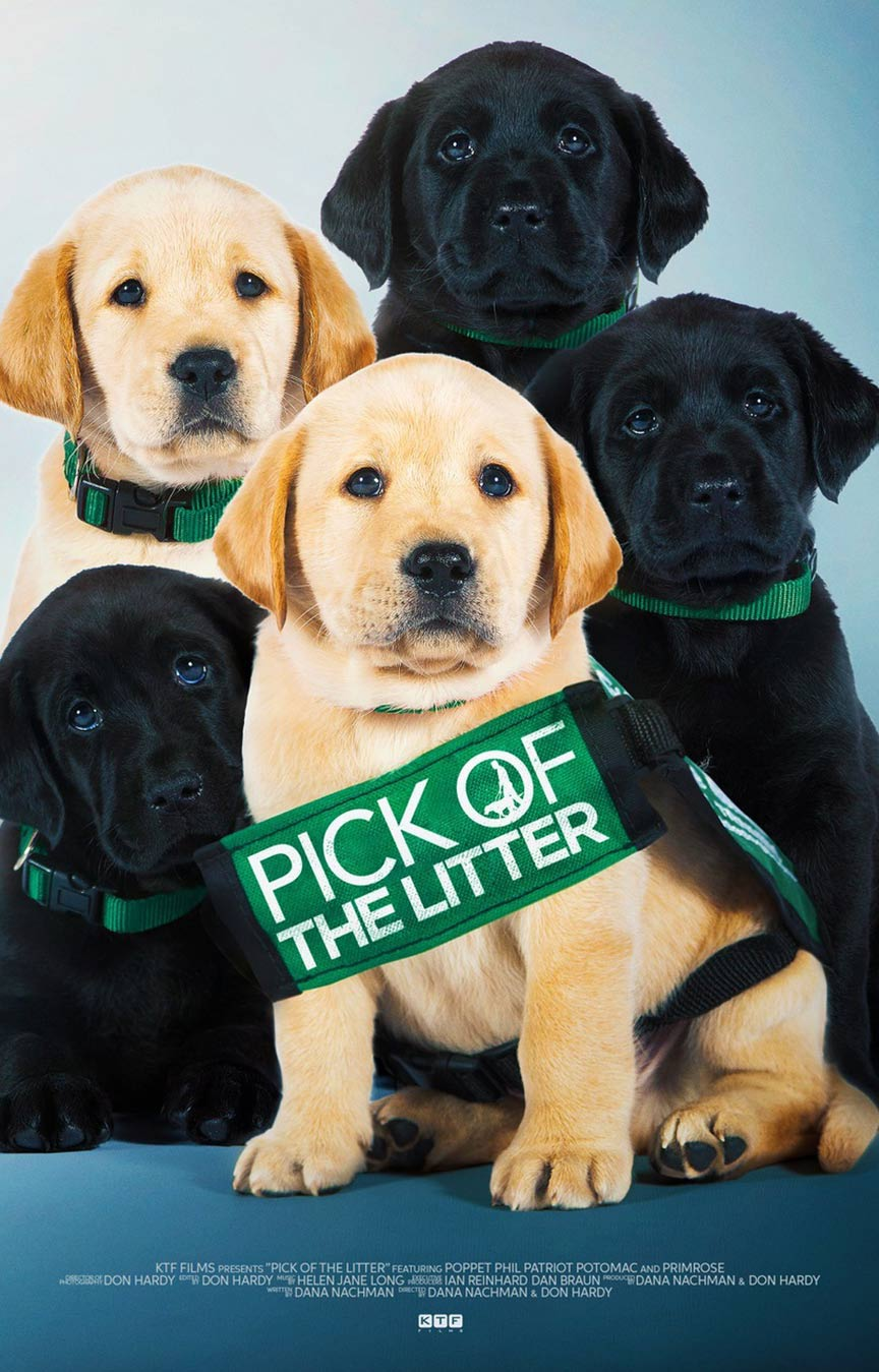 Pick of the Litter Poster #1