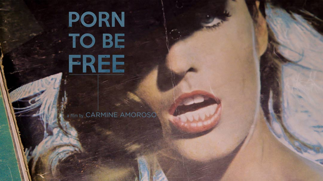 Porn to be Free Poster #1