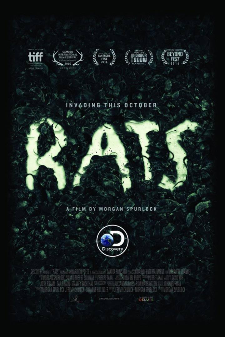 Rats Poster #1