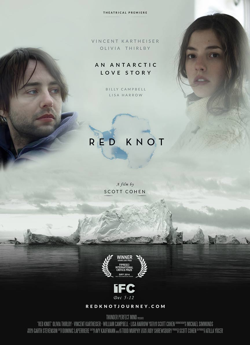 Red Knot Poster #1
