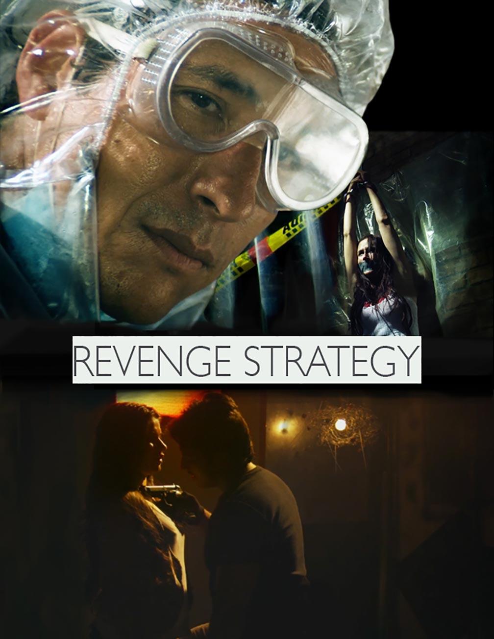 Revenge Strategy Poster #1