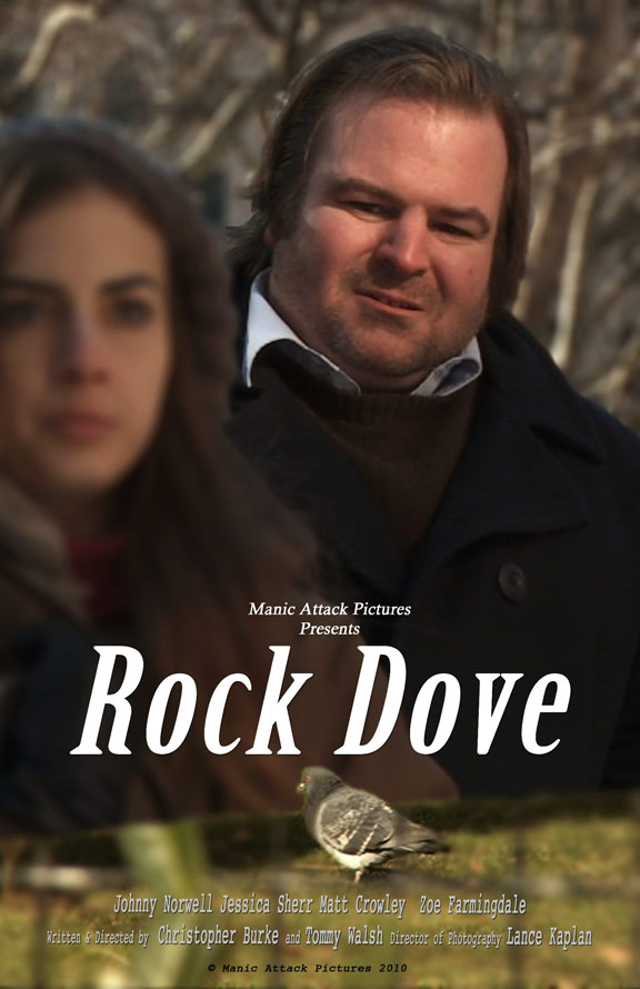 Rock Dove Poster #1