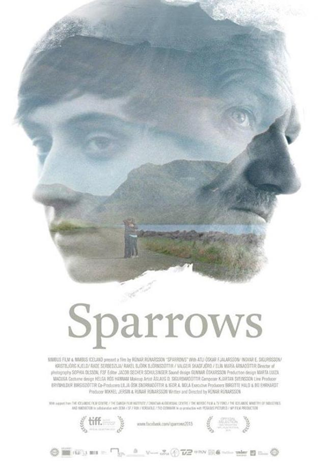 Sparrows Poster #1