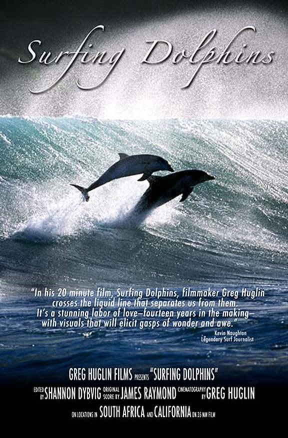 Surfing Dolphins Poster #1