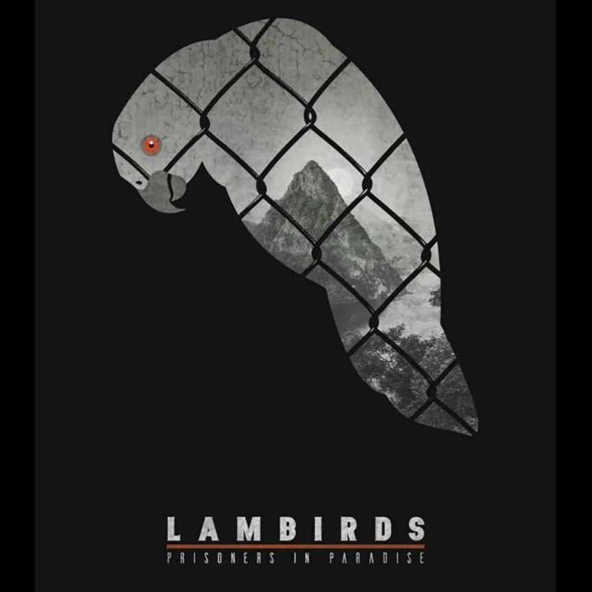 The Lambirds Poster #1