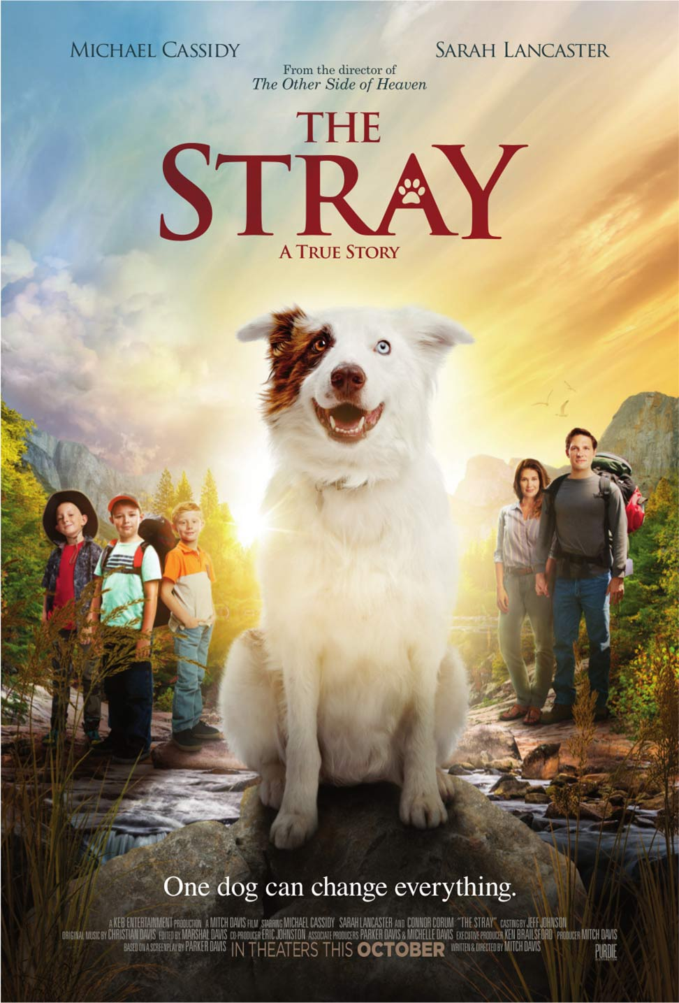 The Stray Poster #1