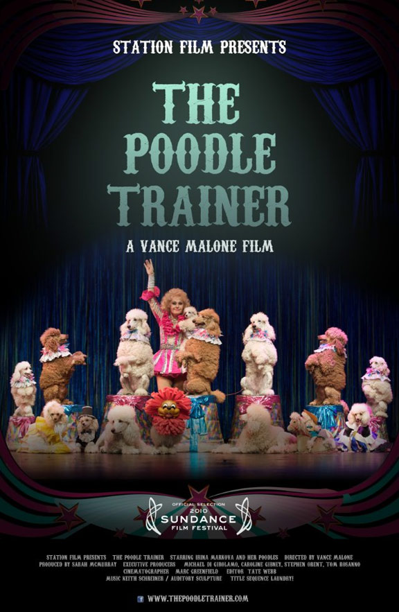 The Poodle Trainer Poster #1