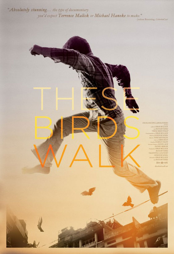 These Birds Walk Poster #1