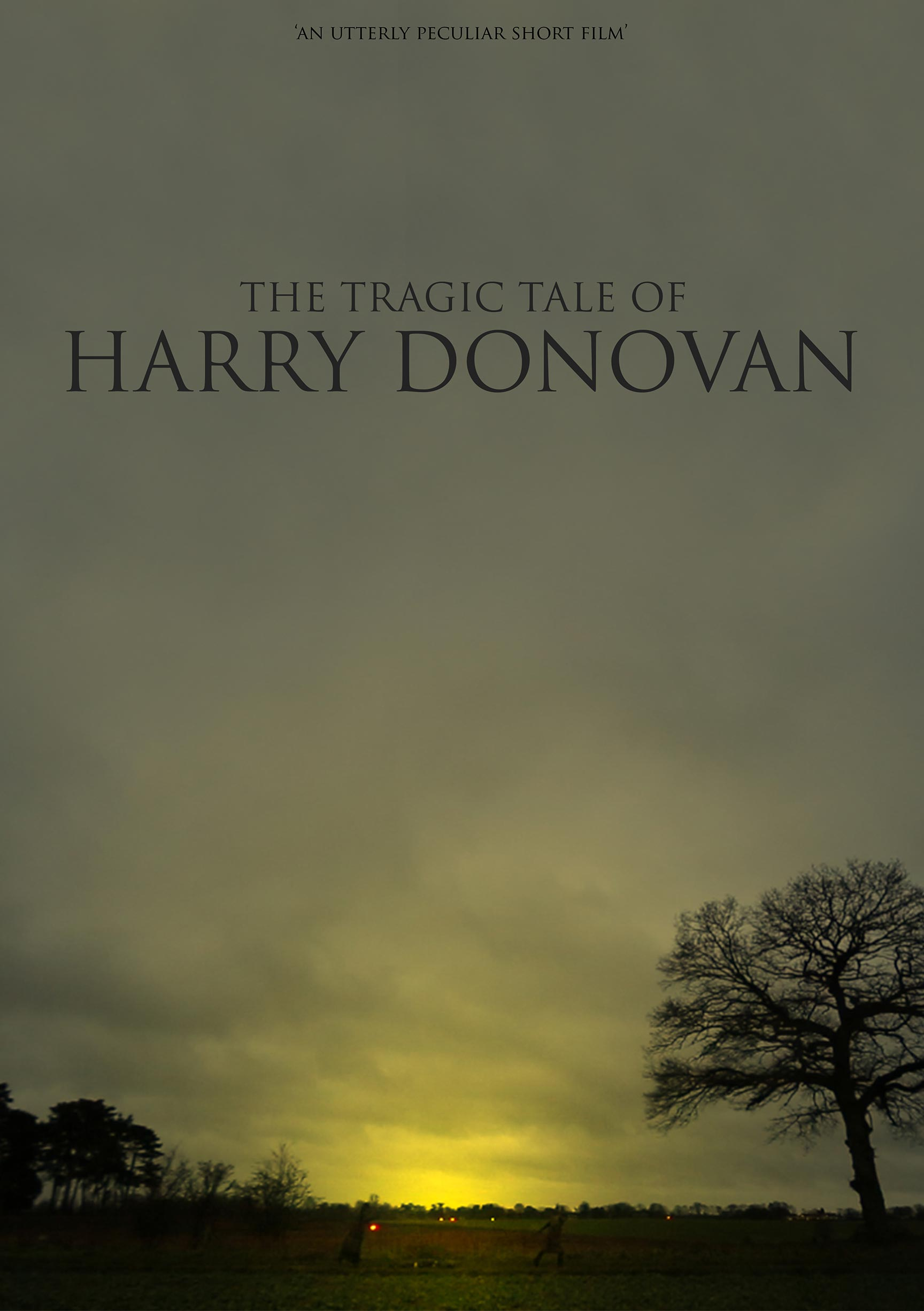The Tragic Tale of Harry Donovan Poster #1